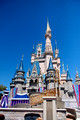 Disney Magic Kingdom 2010